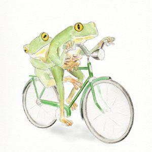 Vélo - Grenouilles vertes